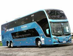 10 best coach bus images in 2019