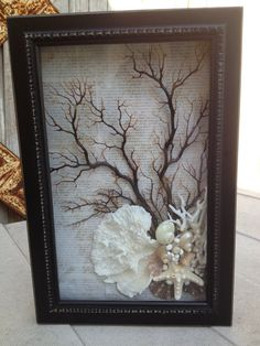 Black Sea shell, fan de la mer et corail shadow box-shabby chic-vintage donc lookSm