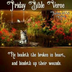 Psalm 147:8 KJV