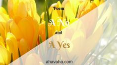 Poem- A No and a Yes faith, hope, love, spirituality, religion, christianity, God, inspiration, motivation,  beautiful, awesome, blessings, light, Jesus, bible, verse, scripture, card, greeting card, postcards, poetry, poems, art, writing, artwork