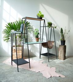 Alpina furniture by Ries is made from thin steel shapes