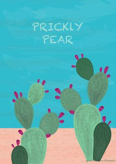 Prickly Pear in Jeju Island.   Illustrated by doreuri    +) Portfolio  grafolio.com/doreuri  blog.naver.com/doreuri    +) mail  v_vaa0117@naver.com