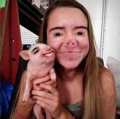 The Piglet: | 26 Face Swaps That Will Make You Ridiculously Uncomfortable. I died looking at these.