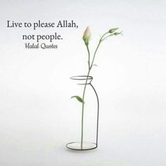 Image discovered by Halal Quotes. Find images and videos about islam, muslim and allah on We Heart It - the app to get lost in what you love. Islamic Qoutes, Islamic Teachings, Islamic Inspirational Quotes, Muslim Quotes, Religious Quotes, Spiritual Quotes, Arabic Quotes, Hindi Quotes, Ispirational Quotes