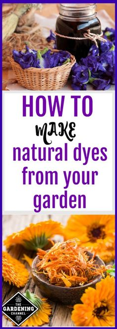 How to Make and Use Natural Dyes Making natural dyes from your garden. There are many plants that can be harvested and used to make dye. Learn how to start coloring your own fabric. Related posts: Making Natural Clothing Dye From Vegetables Clothes Dye, Diy Clothes, Natural Dye Fabric, Natural Dyeing, Tinta Natural, Tie Dye Techniques, Diy Kleidung, How To Dye Fabric, Food Coloring