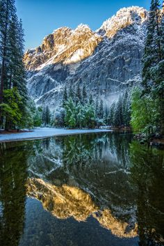 Spring storm snow on Yosemite National Park, California - by Mark Cote.