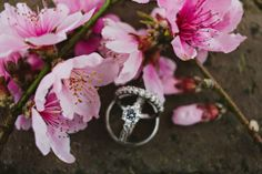 cherry blossoms, creative wedding photography