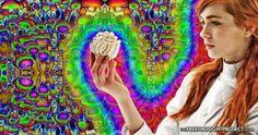 Mainstream Media Just Admitted Magic Mushrooms are Safest Recreational Drug #news #alternativenews