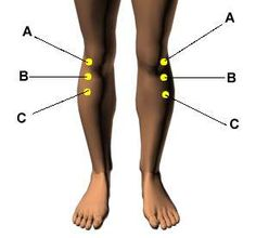 Acupressure Points for Relieving Knee Pain. Love this web site. So cool how this works for so much.