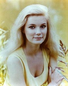 48 best images about Yvette Mimieux Yvette Mimieux, Daenerys Targaryen, Game Of Thrones Characters, Fictional Characters, Stars, Tv, Television Set, Sterne, Fantasy Characters