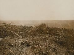 WWI. German barbed wire at Beaucourt, November 1916.