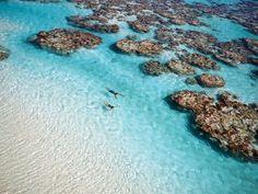 Le paradis de Marlon Brando -  C'était l'île retraite de Marlon Brando qui menait là une vie quasi-simple en chemise fleurie. Ce sera bientôt une île hôtel 100% luxe et 100% green. The Brando ouvre le 1er juillet sur l'atoll de Tetiaroa au large de Tahiti.