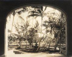 History of Royal Hawaiian Hotel - Waikiki History Pink Palace, Hawaiian Quilts, Vintage Hawaiian, Hawaii Travel, Oahu, How To Find Out, History, Architecture, Hawaiian Clothes