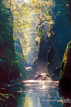 This picture is so beautiful and so calming.  I love how sunlight shines through trees on to water.