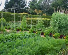 Vegetable and cutting Garden