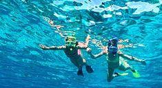 Snorkeling Tours departing from Orange Beach AL 36561. Serving Gulf Shores AL 36542, Bon Secour AL 36535, Ft. Morgan AL 36542, Foley AL 36535, Daphne AL 36526, Elberta AL 36530, Lillian AL 36549, F…