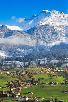 Grindelwald by Nuttapoom Amornpashara Grindelwald Switzerland, Zermatt, Places Around The World, Travel Around The World, Around The Worlds, La Provence France, Places To Travel, Places To See, Travel Destinations