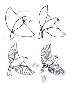 Art at Becker Middle School: Practice drawing birds! Art at Becker Middle School: Practice drawing birds! Flying Bird Drawing, Bird Drawings, Animal Drawings, Drawing Birds, Bird Flying, Fun Drawings, Sketchbook Drawings, Drawing Practice, Drawing Skills