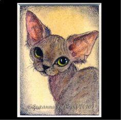 ACEO LT ED DEVON REX CAT PAINTING PRINT SUZANNE LE GOOD