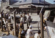 한국전 6.25 동란 당시의 대구역 Korean War, American Soldiers, Busan, Old Pictures, Historical Photos, South Korea, Past, Politics, Street View