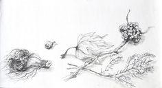 Emilia Nadal Calendário Outono-Inverno -154)13 2014 Drawing x Canvas 28 cm x 50 cm  #EmiliaNadal #Painting at #SãoMamede #Art #Gallery #artwork