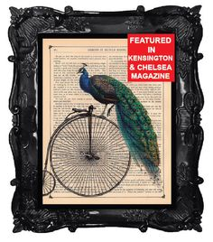 Peacock print - Peacock art - peacock bike