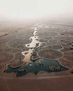 Dubai Al Qudra lake Dubai Beach, Dubai Desert, Burj Al Arab, Resorts, Dubai Cars, Dubai Airport, Crazy Day, Dubai Life, Tours