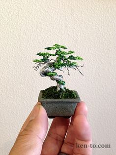 Green Wire bonsai tree by Ken To by KenToArt.deviantart.com on @deviantART
