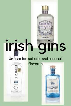 Cocktails, Alcoholic Drinks, Make Money From Home, How To Make Money, English Gin, Flavoured Gin, Gin Distillery, Gin Brands, Gin Tasting