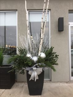 Created by myself, Danielle Leroux, located at the entrance of St-Laurent Trends where I work. Created by myself, Danielle Leroux, located at the entrance of St-Laurent Trends where I work. Outdoor Christmas Planters, Christmas Urns, Outdoor Christmas Decorations, Christmas Centerpieces, Simple Christmas, Christmas Lights, Christmas Wreaths, Christmas Crafts, Holiday Decor