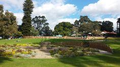Kings Park - Perth WA