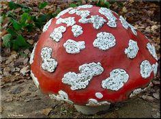 muziek paddenstoel Anton, Fairytale, Christmas Bulbs, Bullet Journal, Holiday Decor, Places, Fairy Tail, Fairytail, Christmas Light Bulbs