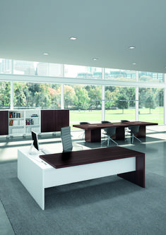 Our Contemporary Office Desk collection showcases some of the most stylish executive office furniture found anywhere. Reinvent your office space with our modern business furniture designs. Contemporary Office Desk, Modern Office Desk, Office Desks, Bureau Design, Executive Office Furniture, Office Table Design, Luxury Office, Ceo Office, Business Furniture