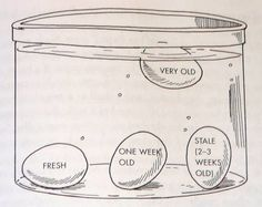 How to tell if eggs are fresh. Good to know! | Food! | Pinterest ...