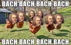 #chickensmeme