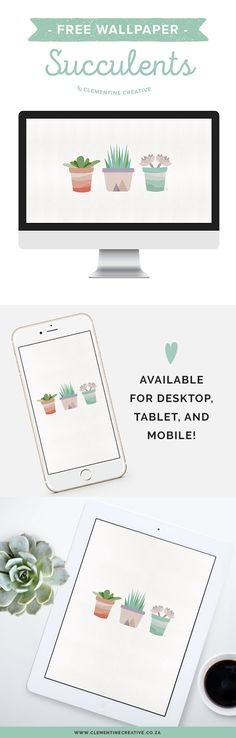 Download this cute succulent wallpaper for your desktop, tablet or phone!