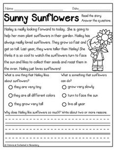 Reading Comprehension Passages- Fall Set from Enchanted in Elementary