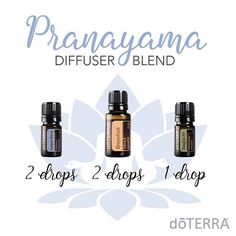 Want to know about grapefruit essential oil? I've included all there is to know about doTERRA grapefruit essential oil uses including DIY & food recipes. Juniper Berry Essential Oil, Grapefruit Essential Oil, Best Essential Oils, Essential Oil Uses, Doterra Grapefruit, Pranayama, Doterra Diffuser, Essential Oil Diffuser Blends, Aromatherapy Diffuser
