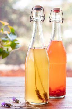 Probiotic Foods, Fermented Foods, Kombucha Recipe, Sem Internet, Gut Health, Healthy Tips, Detox, Natural, Vegan Recipes