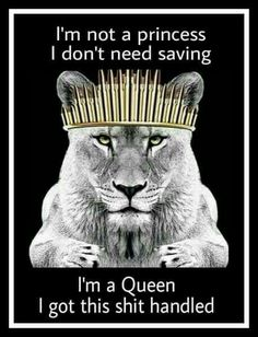 Your F**King Right there! I'm a Queen Bitch ♌! Leo Zodiac Facts, My Zodiac Sign, Leo Horoscope, Astrology Leo, Lioness Quotes, Leo Quotes, Zodiac Quotes, Woman Quotes, All About Leo