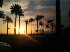 Abedi Ali Los Angeles Santa Monica CA