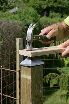 Vindskydd terrass Porch Garden, Diy Pergola, Yard Art, Plank, Diy Furniture, Fence, Decoration, Backyard, Outdoor
