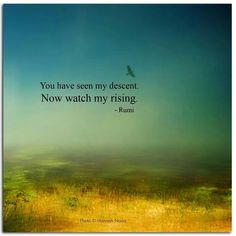 You have seen my decent. Now watch my rising. - Rumi