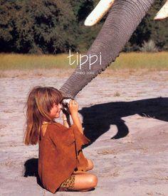http://www.livehonestly.com/28/category/tippi%20degre/1.html  Tippi's story
