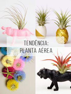 Plantas aéreas são tendência! Veja muitas ideias para exibi-las em casa. // palavras-chave: decoração, design de interiores, tendência, inspiração, plantas, jardinagem, diy, faça você mesmo, planta aérea