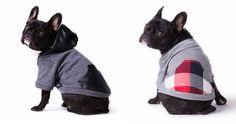 dog hoodies by Bonnie & Grover