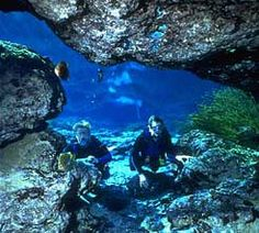 Ginnie Springs Outdoors in Florida ranks highly as the best Florida scuba diving destination. Explore the underwater grottos in Florida.