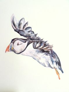 Puffin decal bird wall stickers bird art bird by SmockBallpoint