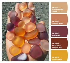 Instantly turn any picture into a palette with ColorSnap, created for you by Sherwin-Williams. Bedroom Colour Schemes Neutral, Small Bedroom Colours, Best Bedroom Colors, Bedroom Colour Palette, Warm Colour Palette, Warm Colors, Bedroom Small, Paint Color Combos, Paint Colors