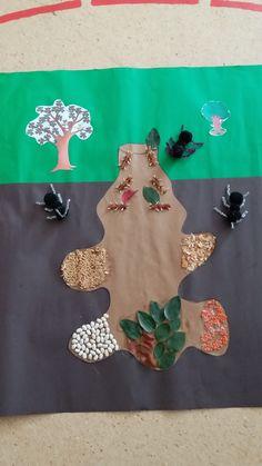Karınca yuvası Crafts For Kids, Gems, Concept, Sand Play, Science Education, Science For Kids, Science Fair, Preschool, Wood Ants